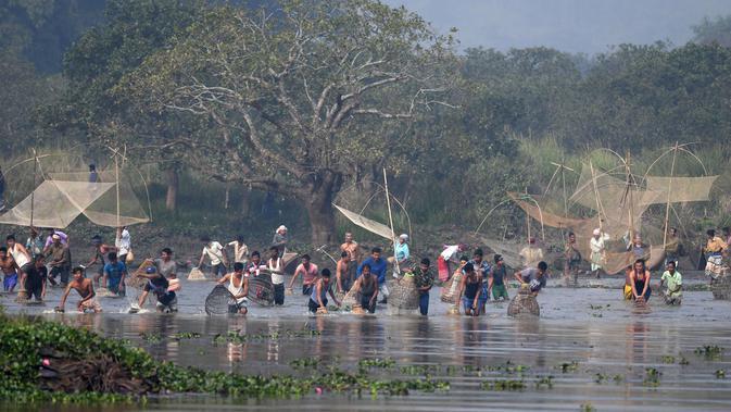 Ratusan warga ikut ambil bagian dalam acara menjaring ikan pada perayaan Festival Bhogali Bihu di Danau Goroimari, sekitar 50 km dari Guwahati di India, Sabtu (13/1). Warga memanen ikan menggunakan jaring. (AFP PHOTO / Biju Boro)