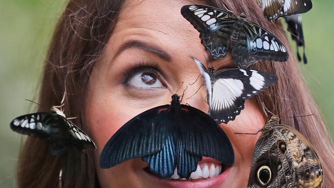 Wajah seorang wanita bernama Jessie dihiasi kupu-kupu saat berpose dalam sesi foto di Wisley Gardens, Inggris (12/1). Lebih dari 50 spesies kupu-kupu eksotis terbang bebas ditempat ini. (AP Photo / Frank Augstein)