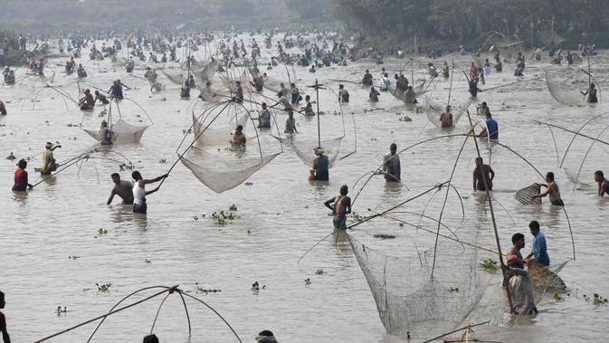Ratusan warga ikut ambil bagian dalam acara menjaring ikan pada perayaan Festival Bhogali Bihu di Danau Goroimari, sekitar 50 km dari Guwahati di India, Sabtu (13/1). Festival ini dirayakan di negara bagian Assam, India.  (AFP PHOTO / Biju Boro)
