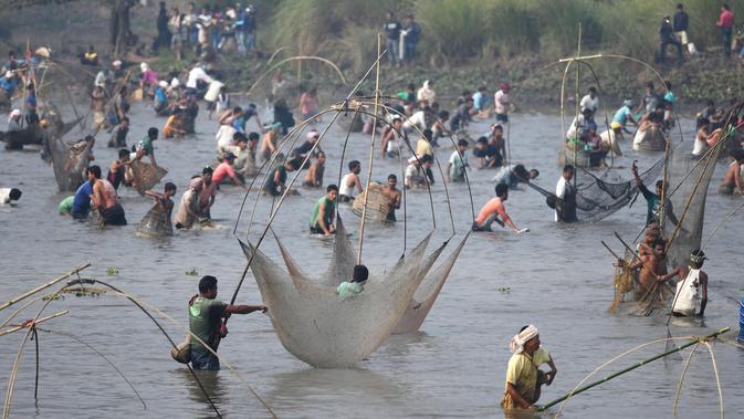 Ratusan warga ikut ambil bagian dalam acara menjaring ikan pada perayaan Festival Bhogali Bihu di Danau Goroimari, sekitar 50 km dari Guwahati di India, Sabtu (13/1). Festival ini merupakan panen ikan secara massal. (AFP PHOTO / Biju Boro)